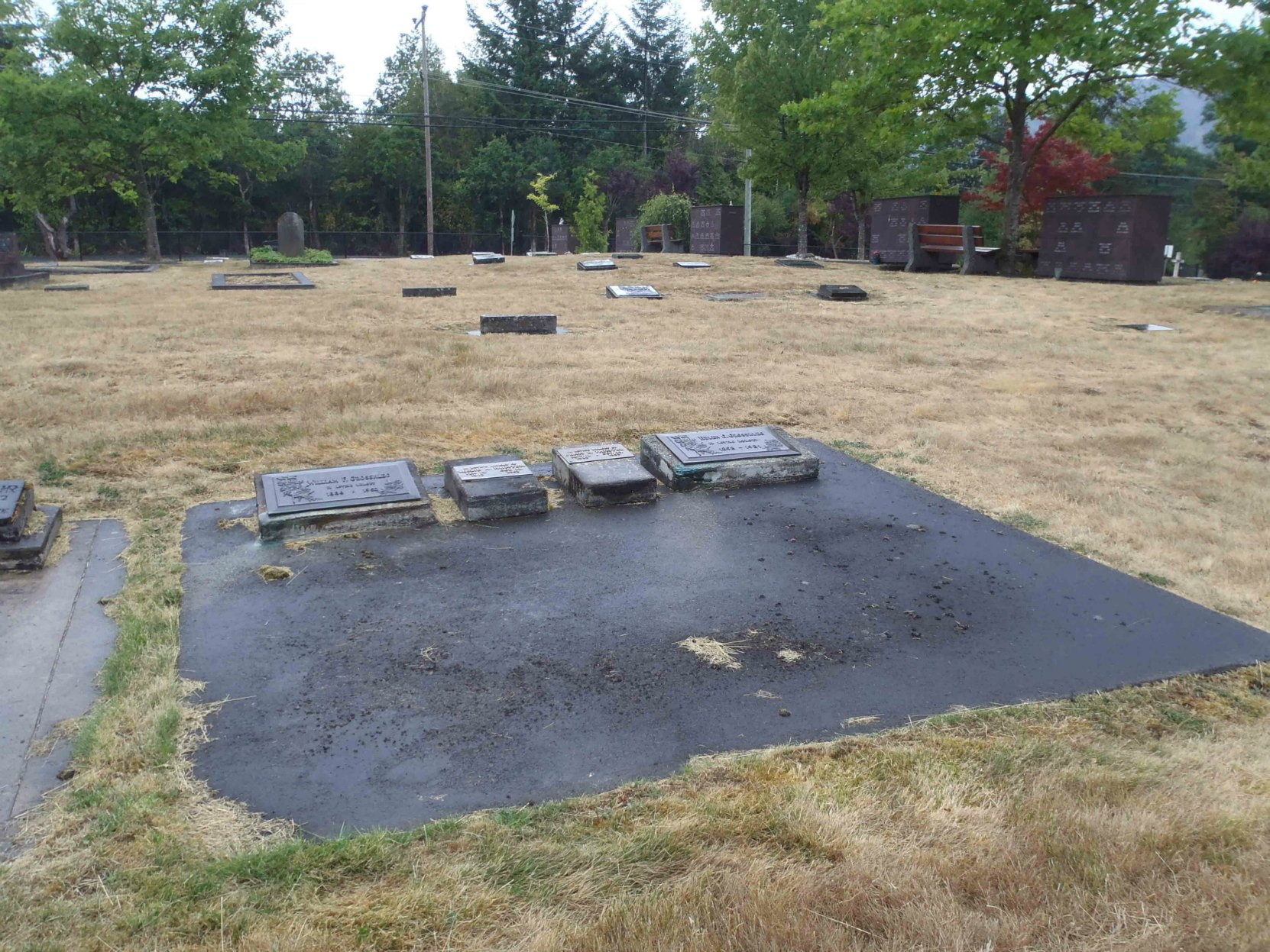 William Grosskleg family grave, Mountain View Cemetery, North Cowichan