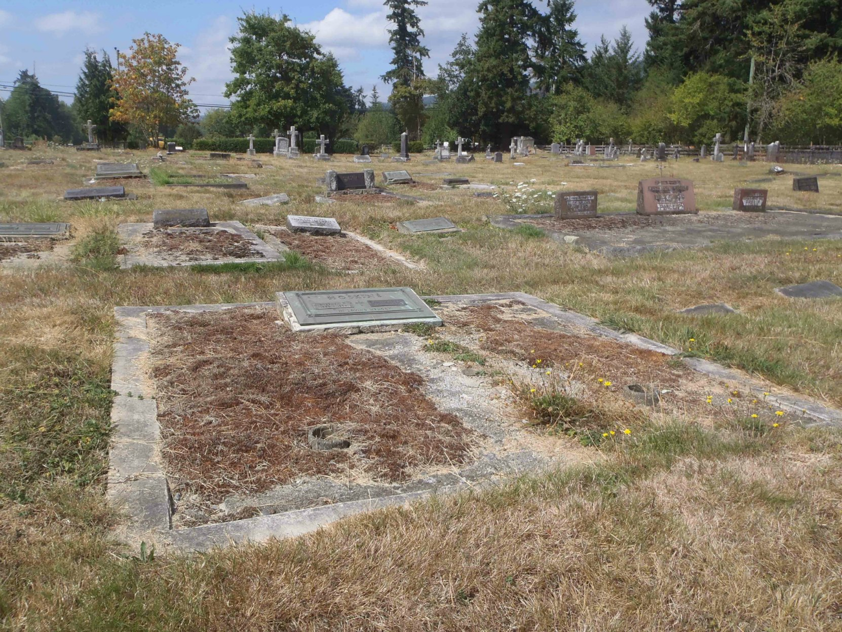 Steven Hoskins grave, St. Mary's Somenos Anglican cemetery, North Cowichan.