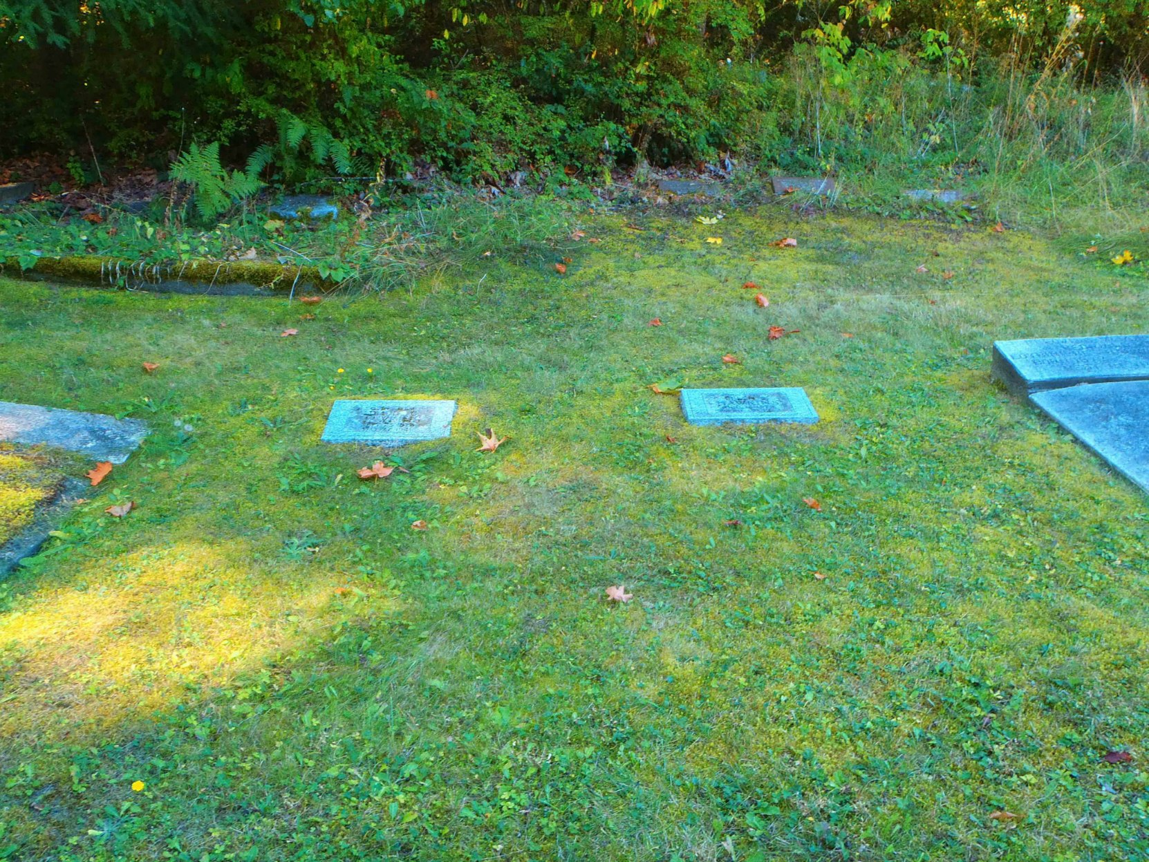 Edmund Coston Hawkins family burial plot, All Saints Anglican Cemetery, Westholme, B.C.