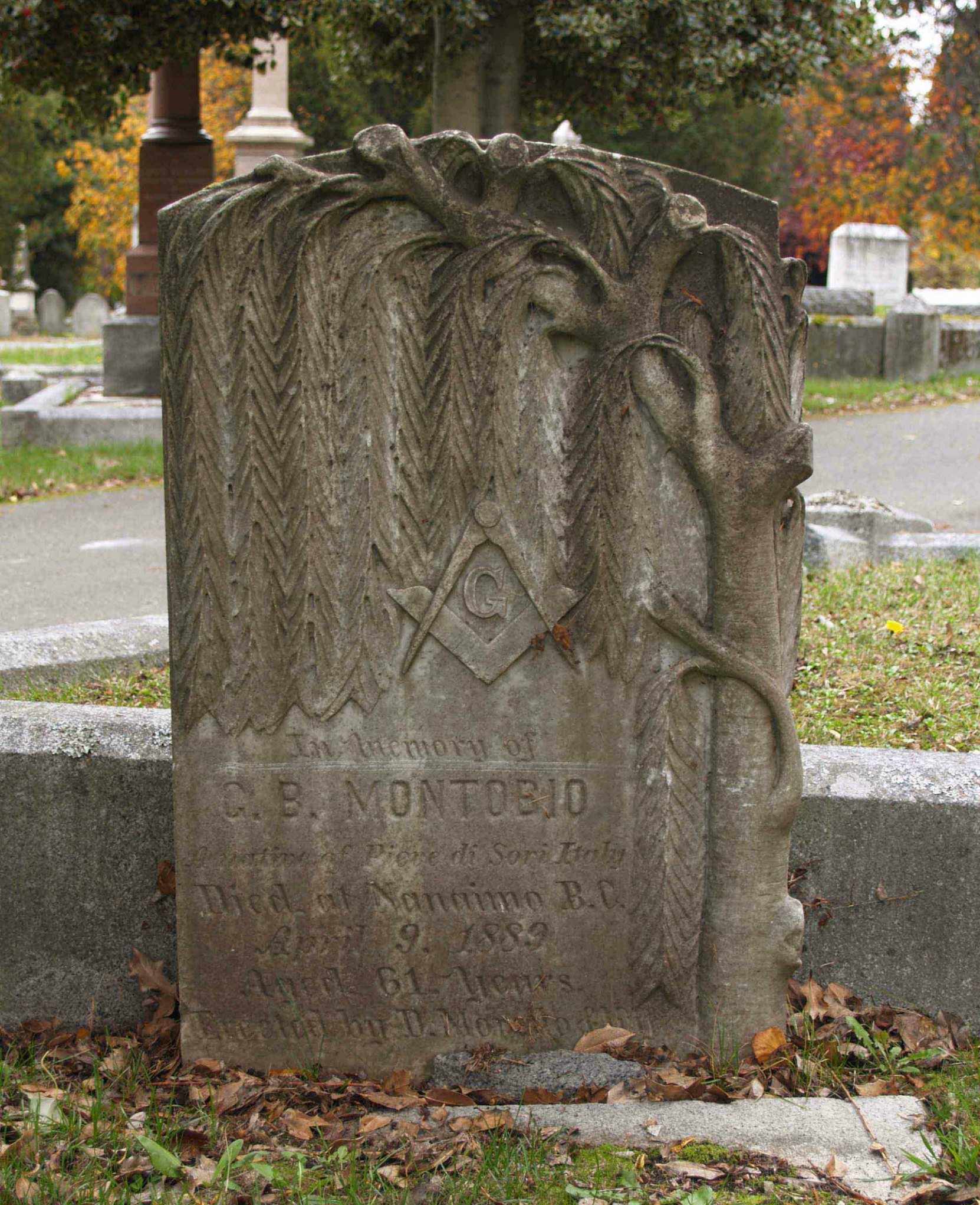 The grave stone of George B. Montobio (died 1889, aged 61) in Ross Bay Cemetery. This grave stone features the Square & Compasses and an Acacia tree. It is one of the pieces of Masonic grave monument art in Ross Bay Cemetery.