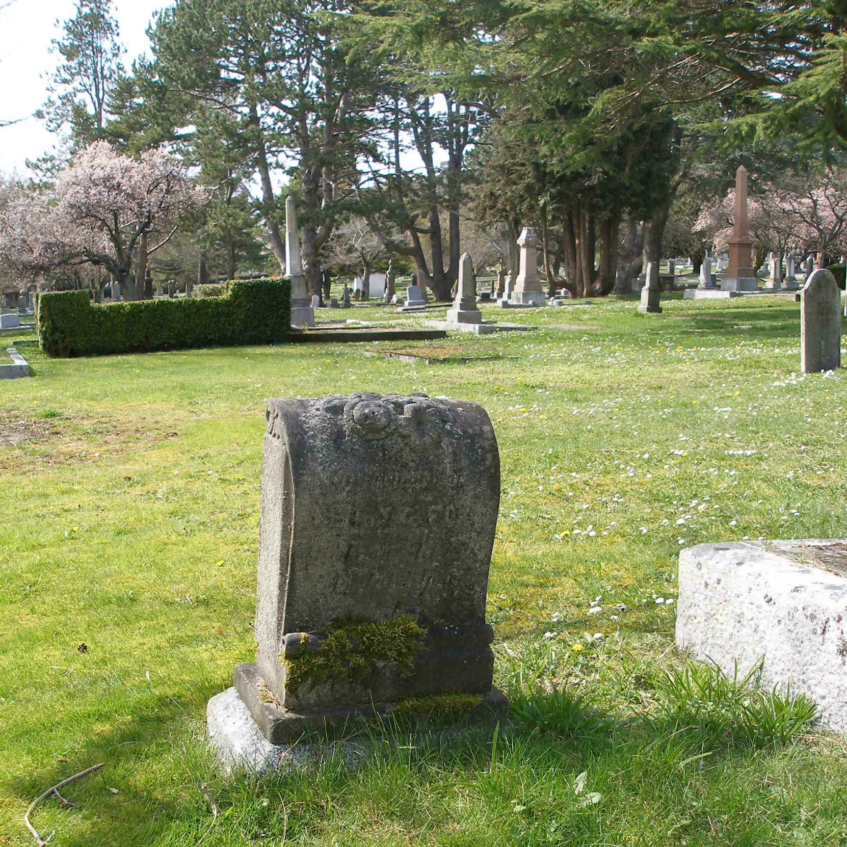 Henry George Fox grave, Ross Bay Cemetery, Victoria, B.C.. (photo by Temple Lodge No. 33 Historian)
